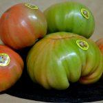 tomates castellanos
